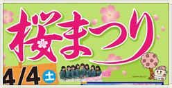 「第30回稲沢桜まつり」開催