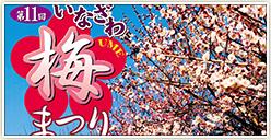 「第11回いなざわ梅まつり」開催!