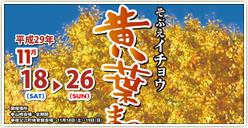 「そぶえイチョウ黄葉まつり~イチョウの郷成人式」開催!