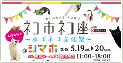 「ネコ市ネコ座~ホゴネコ文化祭~」にご当地キャラが出演!