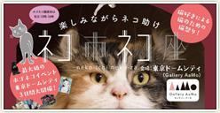 「ネコ市ネコ座 東京ドームシティ」開催!