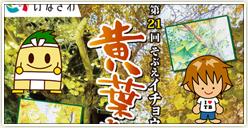 「第21回 そぶえイチョウ黄葉まつり」タボくんバンド出演!