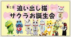 「追い出し猫サクラお誕生会」開催!